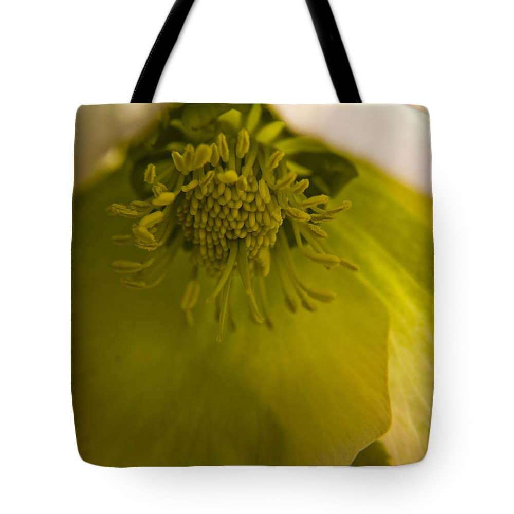 Flower Tote Bag featuring the photograph Lenten Rose Interior by Teresa Mucha