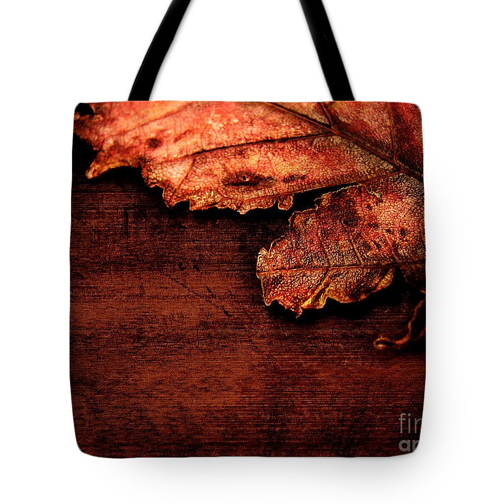 Red Tote Bag featuring the photograph Let Me Hold You... by Dana DiPasquale