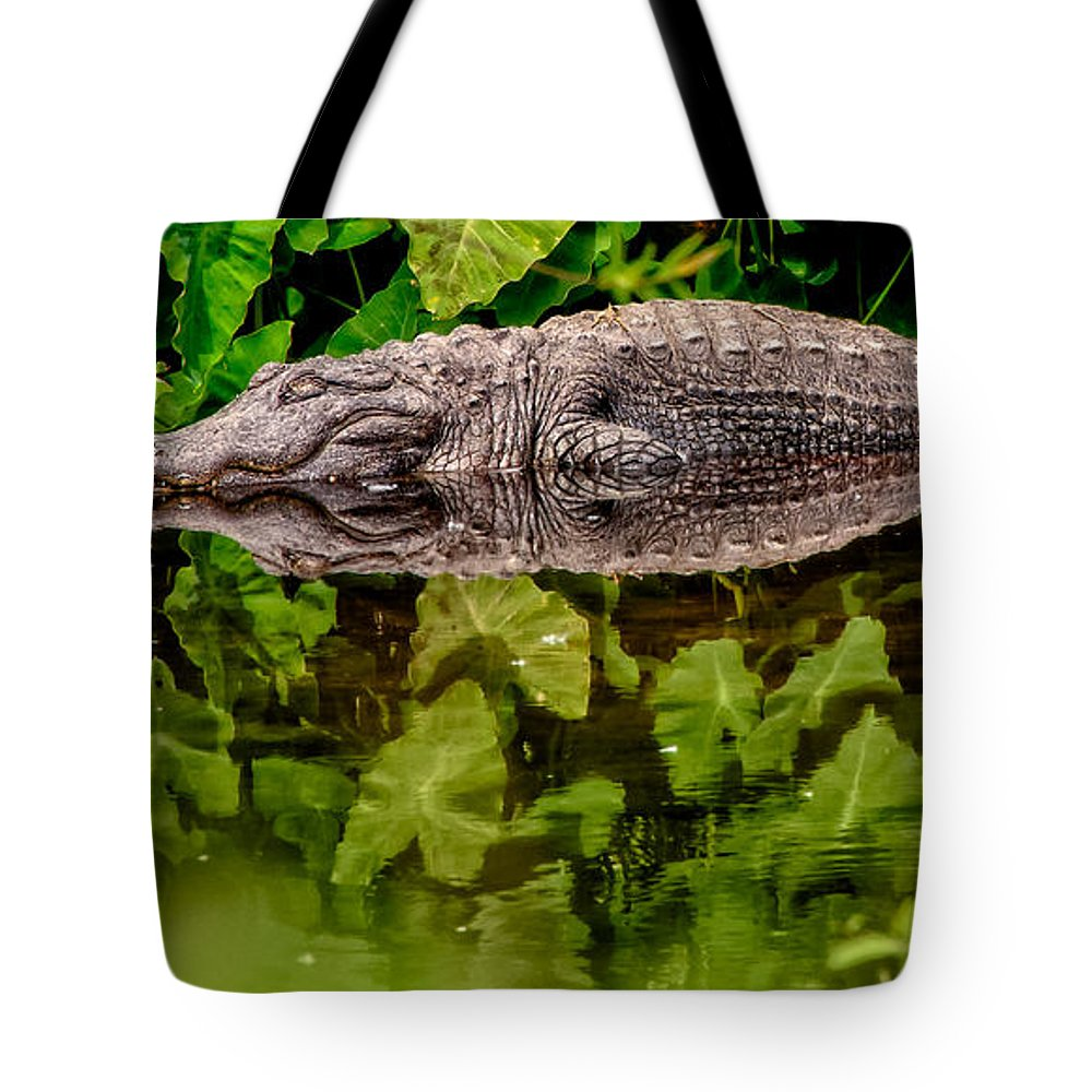 Alligator Tote Bag featuring the photograph Let Sleeping Gators Lie by Christopher Holmes