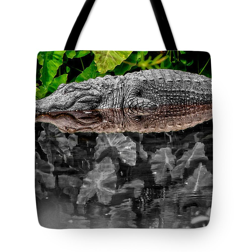American Tote Bag featuring the photograph Let Sleeping Gators Lie - Mod by Christopher Holmes