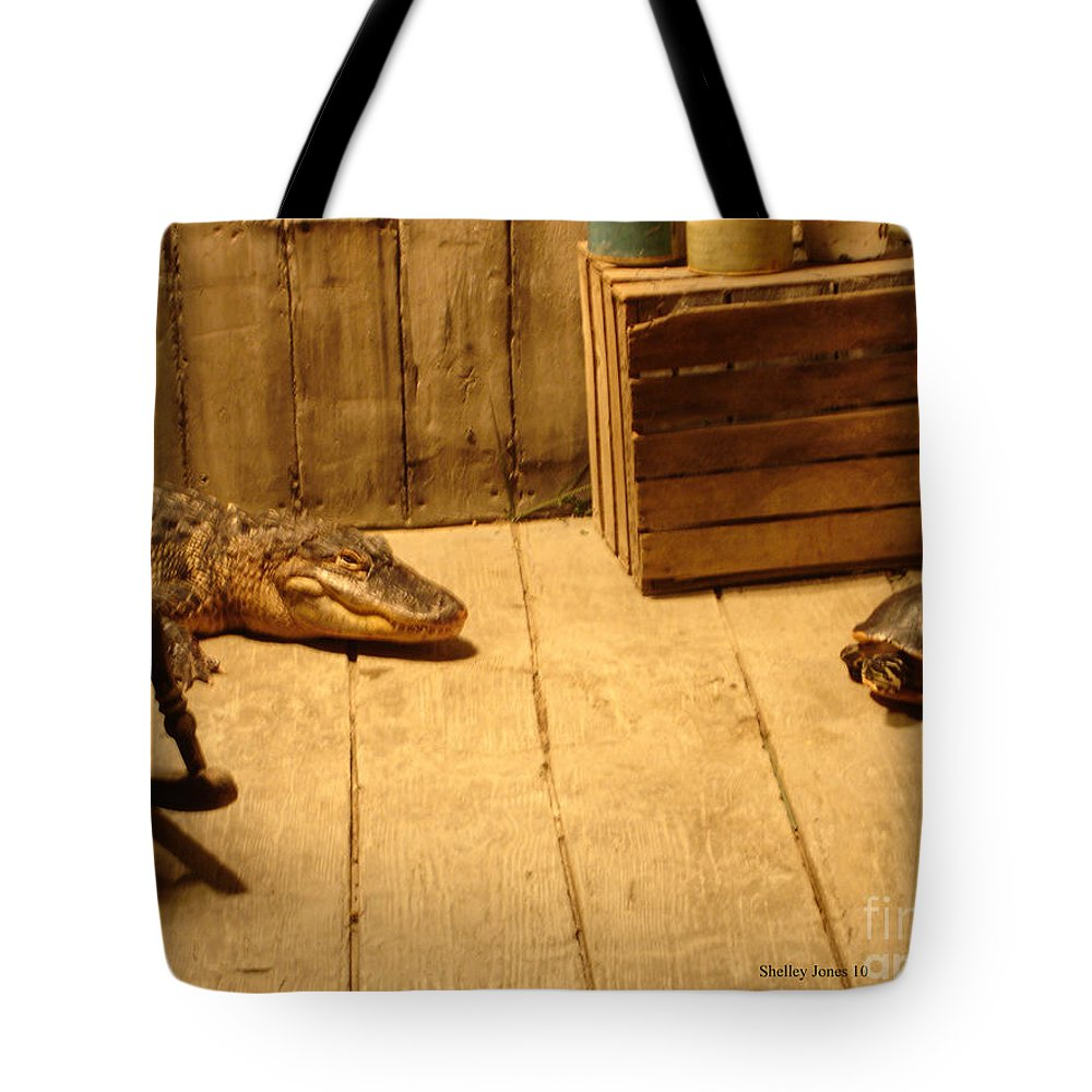 Turtle Tote Bag featuring the photograph Lets Be Friends by Shelley Jones