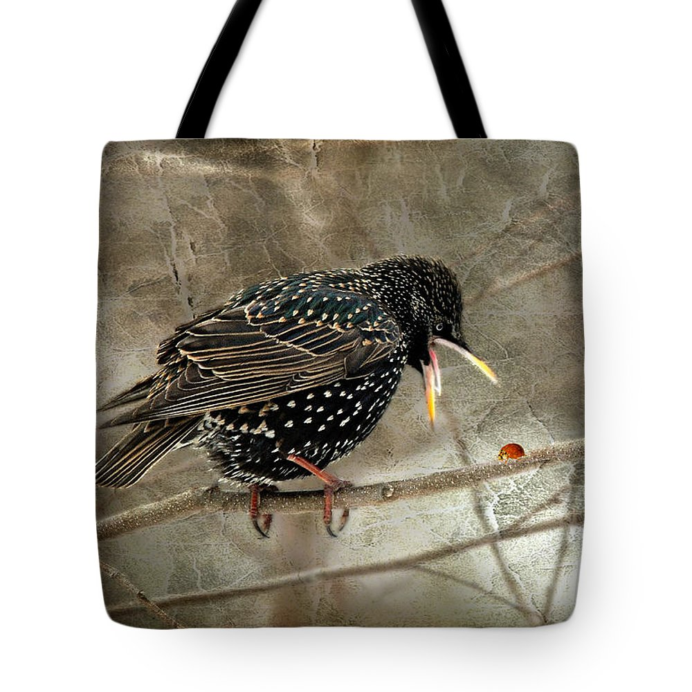 Bird Tote Bag featuring the photograph Let's Do Lunch by Lois Bryan