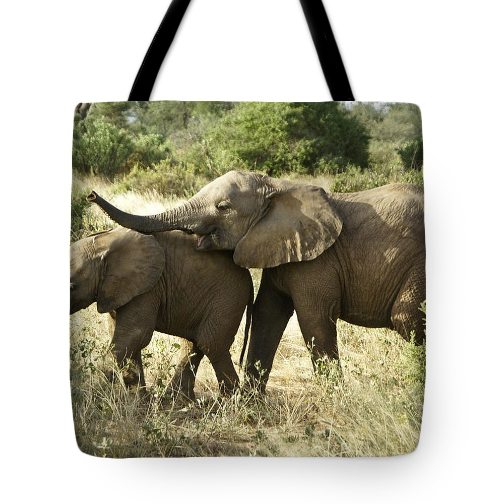 Africa Tote Bag featuring the photograph Let's Play by Michele Burgess
