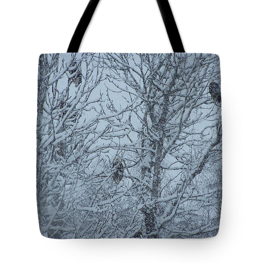 Tote Bag featuring the photograph Let's Talk by Lkm Mkl