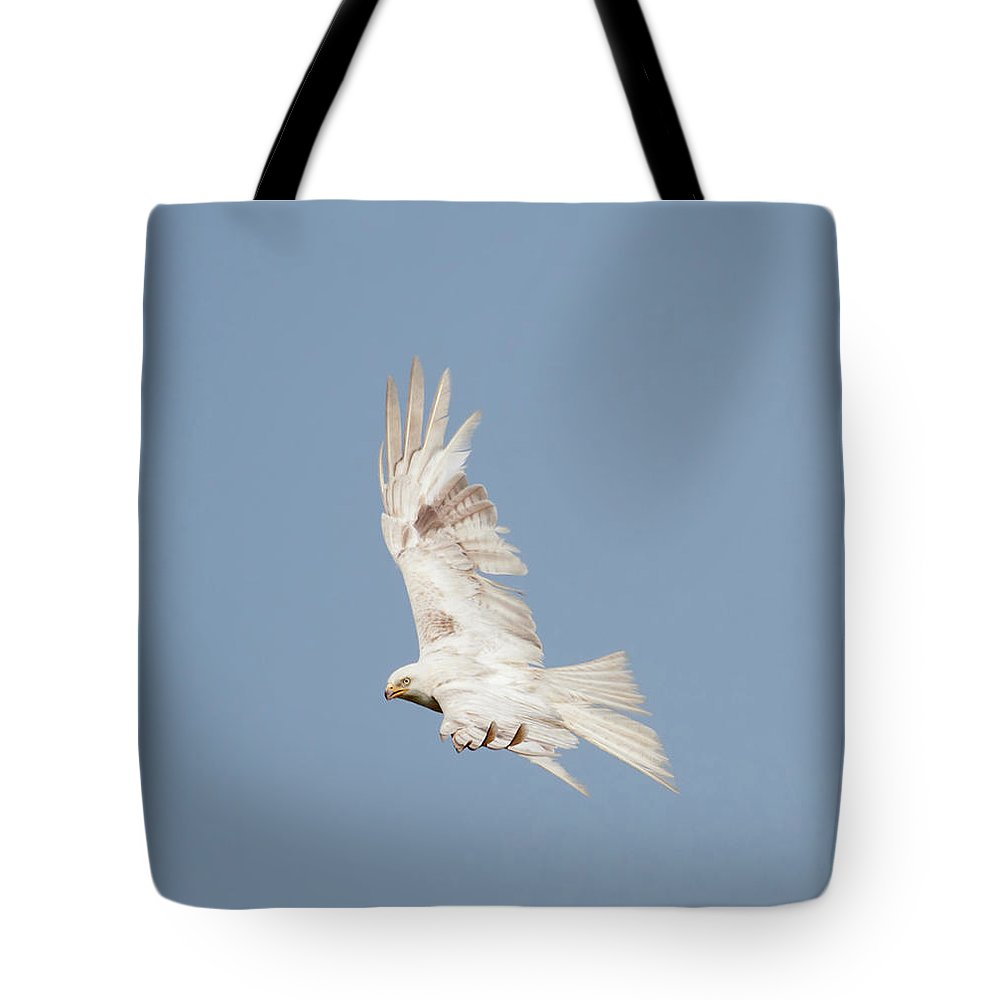 Red Tote Bag featuring the photograph Leucistic Red Kite by Peter Walkden