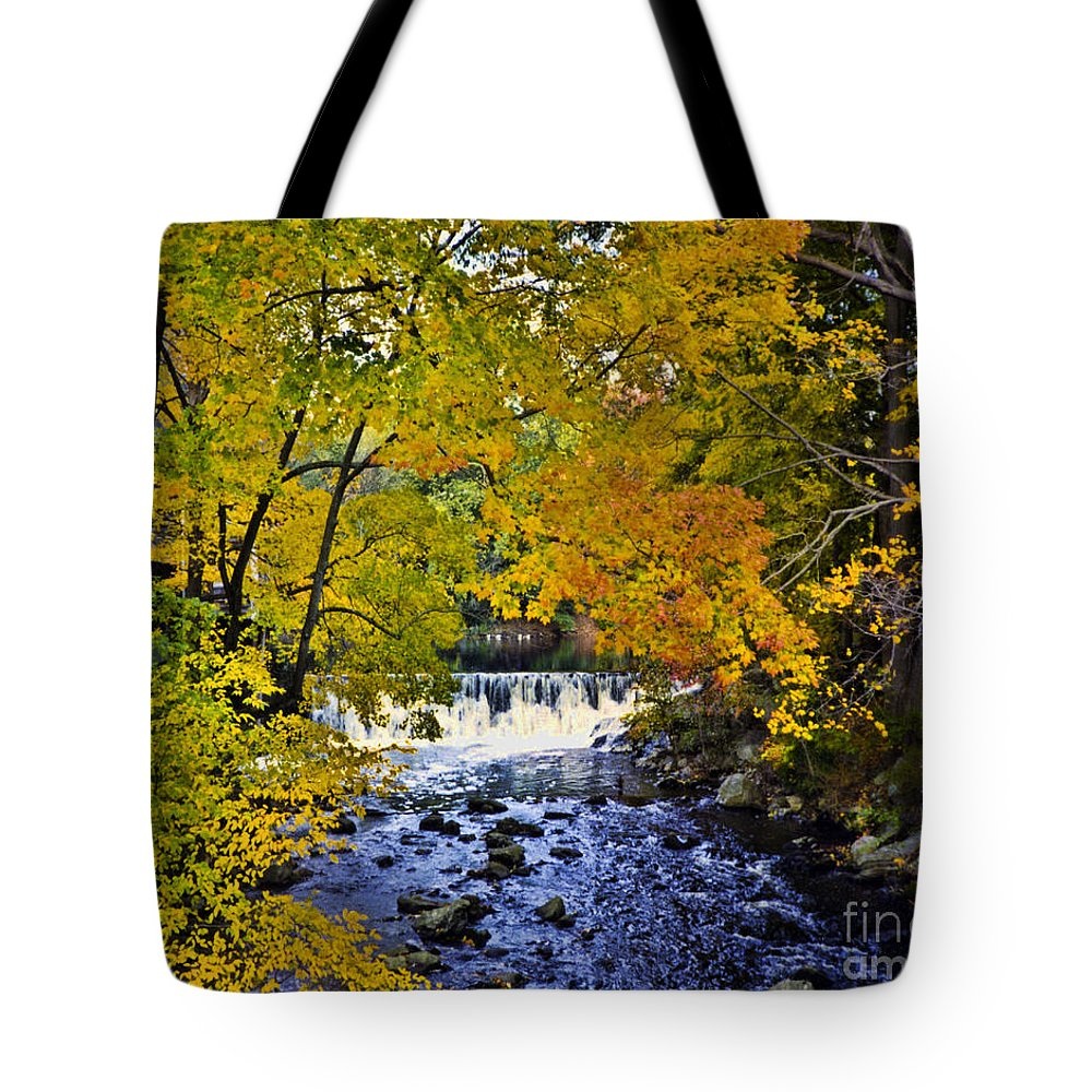 Waterfall Tote Bag featuring the photograph Lidia's Falls by Tommy Anderson