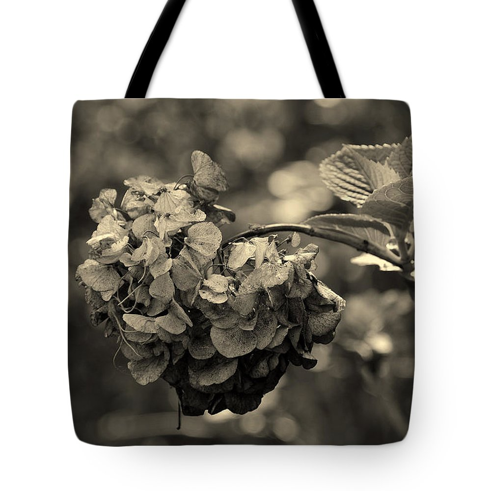 Life And Death Tote Bag featuring the photograph Life And Death by Susanne Van Hulst