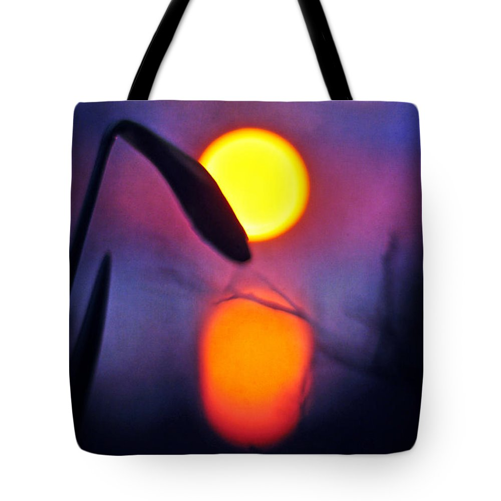 Purple Tote Bag featuring the photograph Life Is Strange by Rebecca Sherman