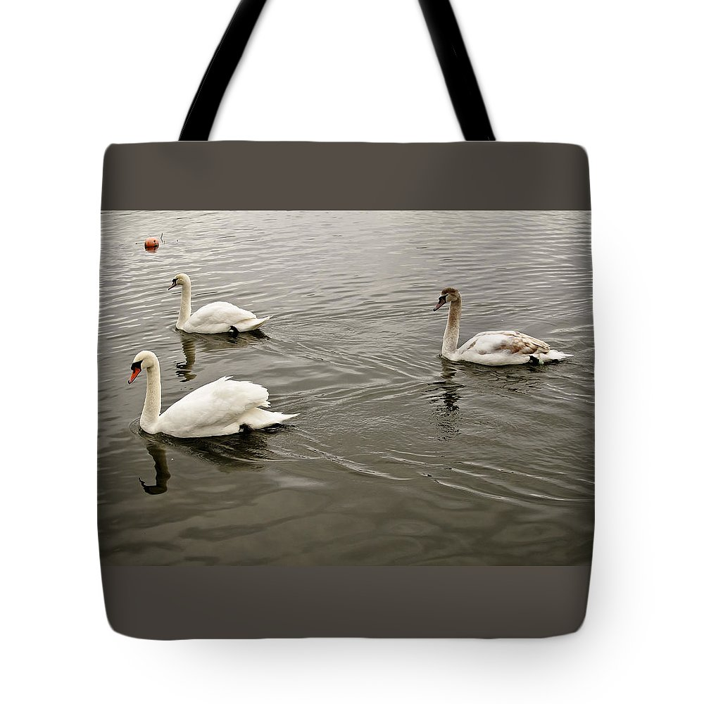 Swan Tote Bag featuring the photograph Life Of A Youngster. by Elena Perelman