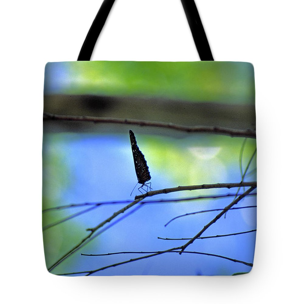 Butterfly Tote Bag featuring the photograph Life On The Edge by Randy Oberg