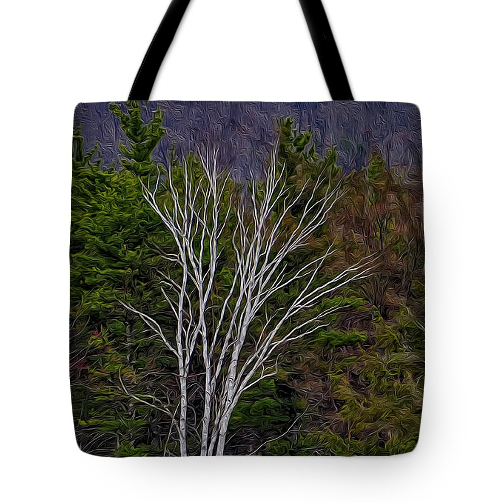 Contoocook Tote Bag featuring the photograph Life's A Birch No.1 by Mark Myhaver