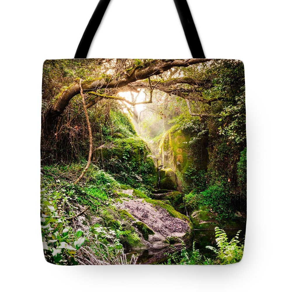 Paradise Tote Bag featuring the photograph Light And Magic by Marco Oliveira