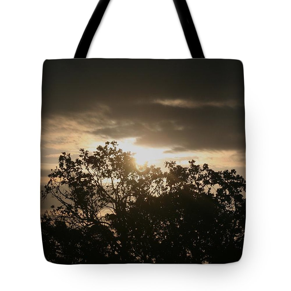 Light Tote Bag featuring the photograph Light Chasing Away The Darkness by Nadine Rippelmeyer