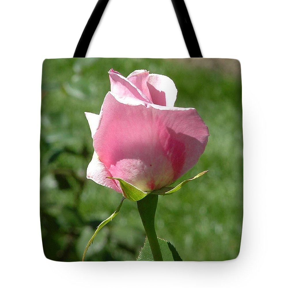 Flower Tote Bag featuring the photograph Light Pink Rose Close-up by Lorna Hooper