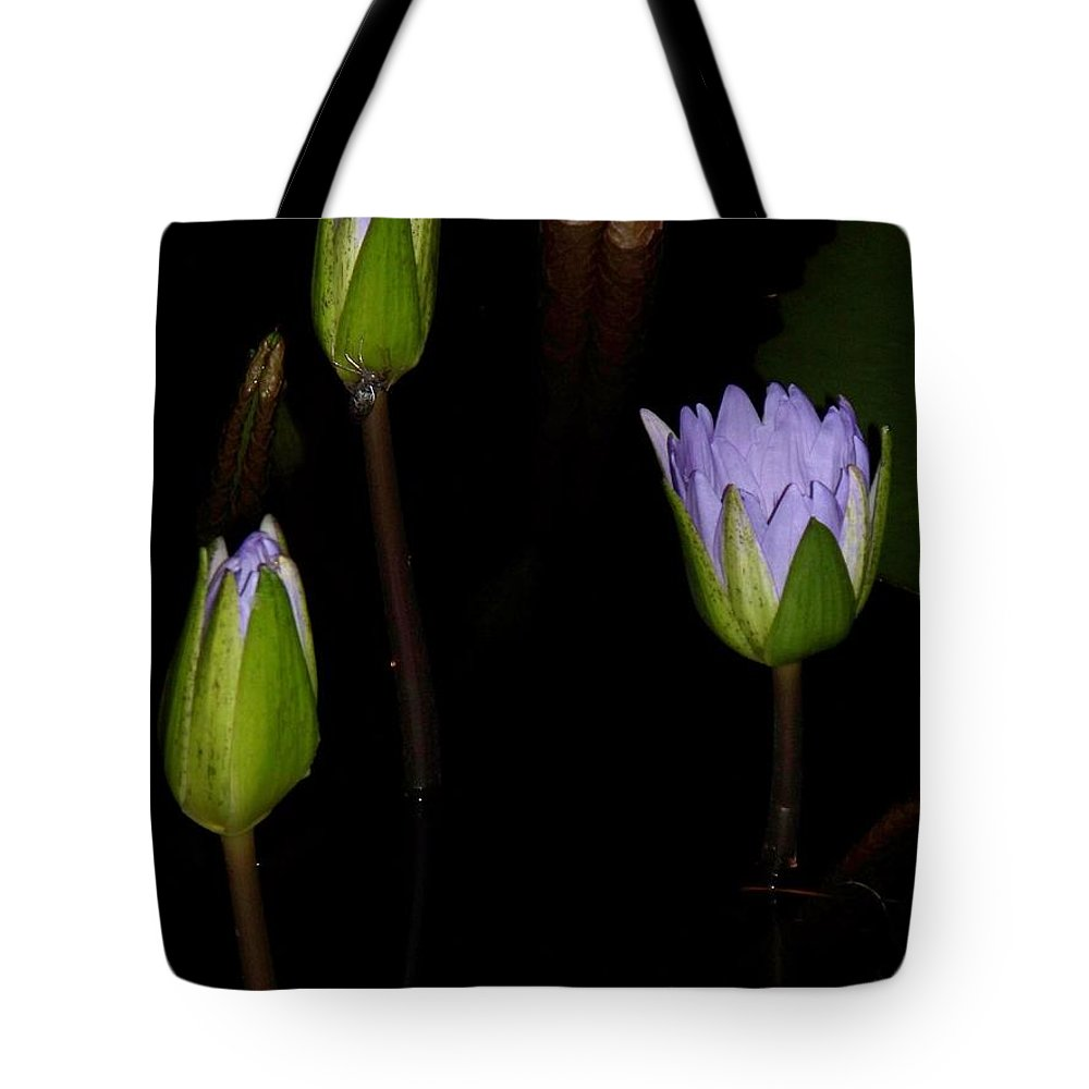 Purple Tote Bag featuring the painting Light Violet Lilies by Eric Schiabor