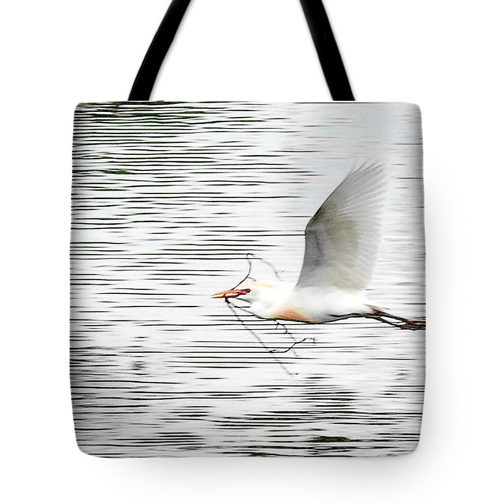 Bird Tote Bag featuring the photograph Light Work by Tony Ambrosio