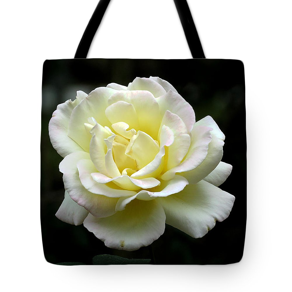 Rose Tote Bag featuring the photograph Light Yellow Rose 1 by J M Farris Photography