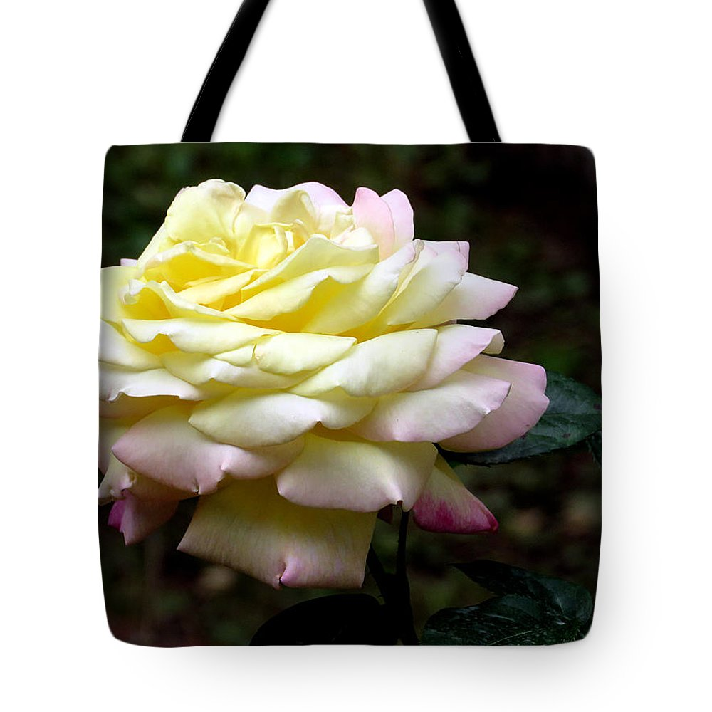 Rose Tote Bag featuring the photograph Light Yellow Rose 2 by J M Farris Photography