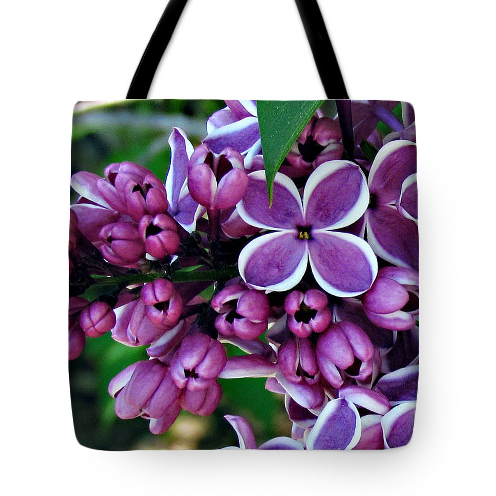 Flowers Tote Bag featuring the photograph Lilac by Roxanne Marshal