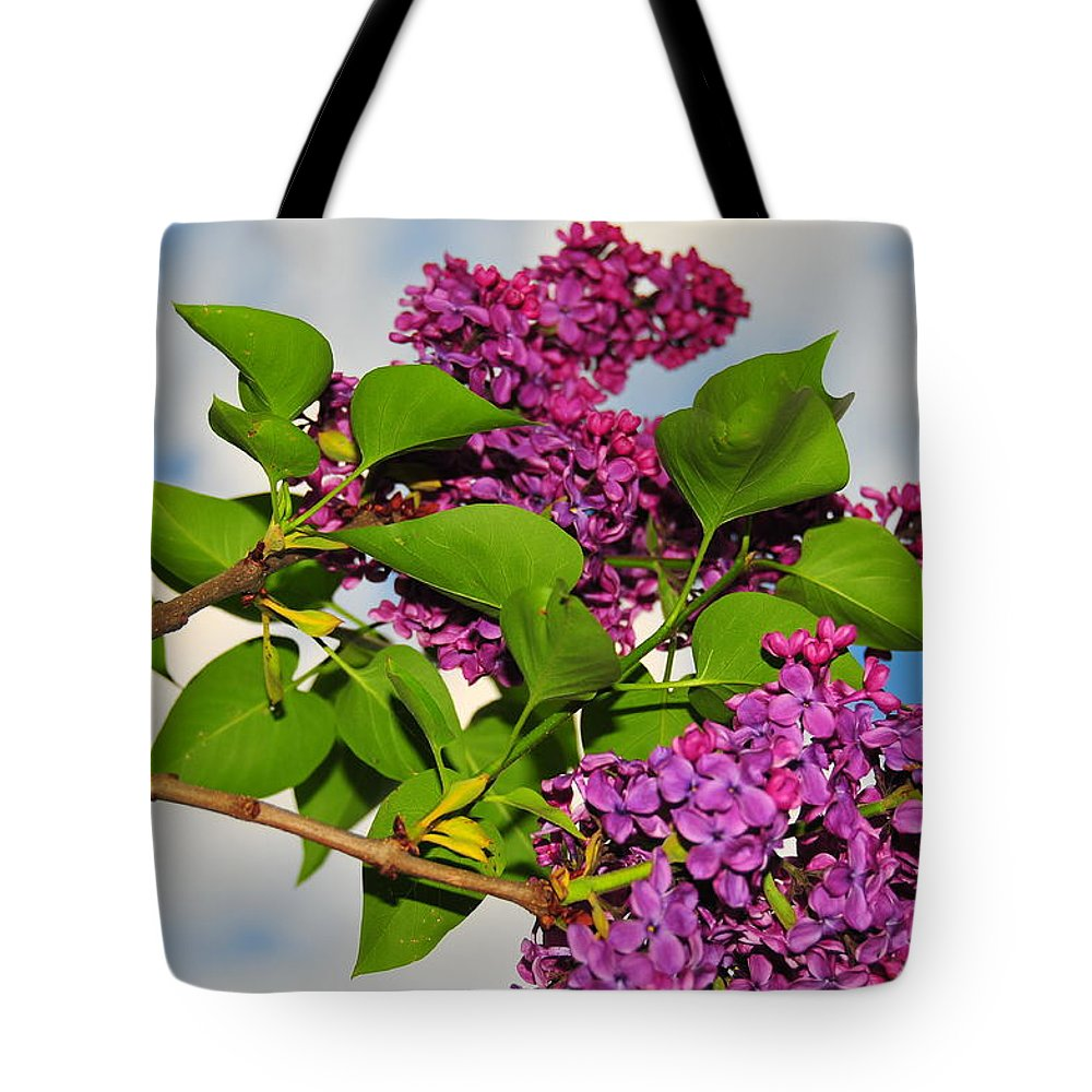 Flower Tote Bag featuring the photograph Lilacs by Catherine Reusch Daley