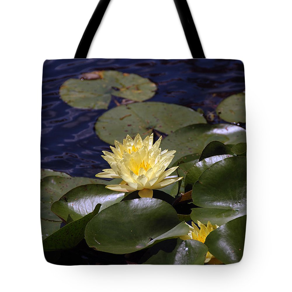 Water Tote Bag featuring the photograph Lilly by Kelvin Booker