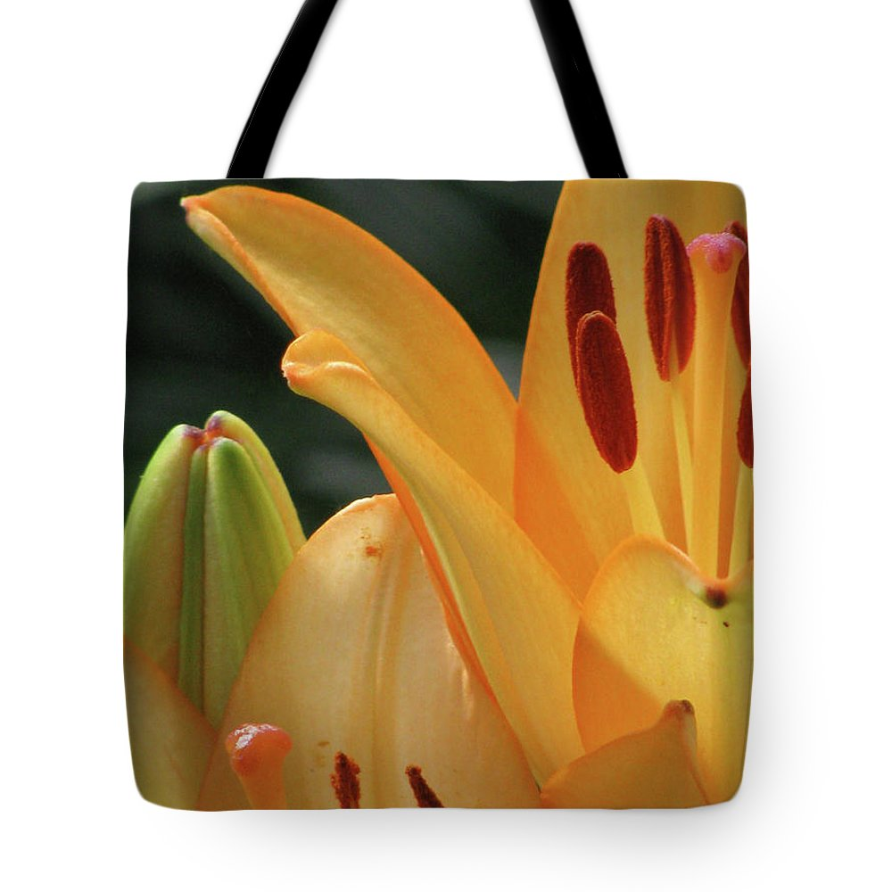 Lily Tote Bag featuring the photograph Lily - American Cheerleader 32 by Pamela Critchlow