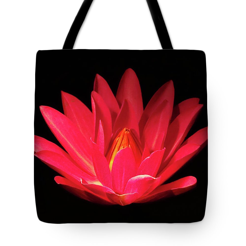 Lily Pads Tote Bag featuring the photograph Lily by Deborah England