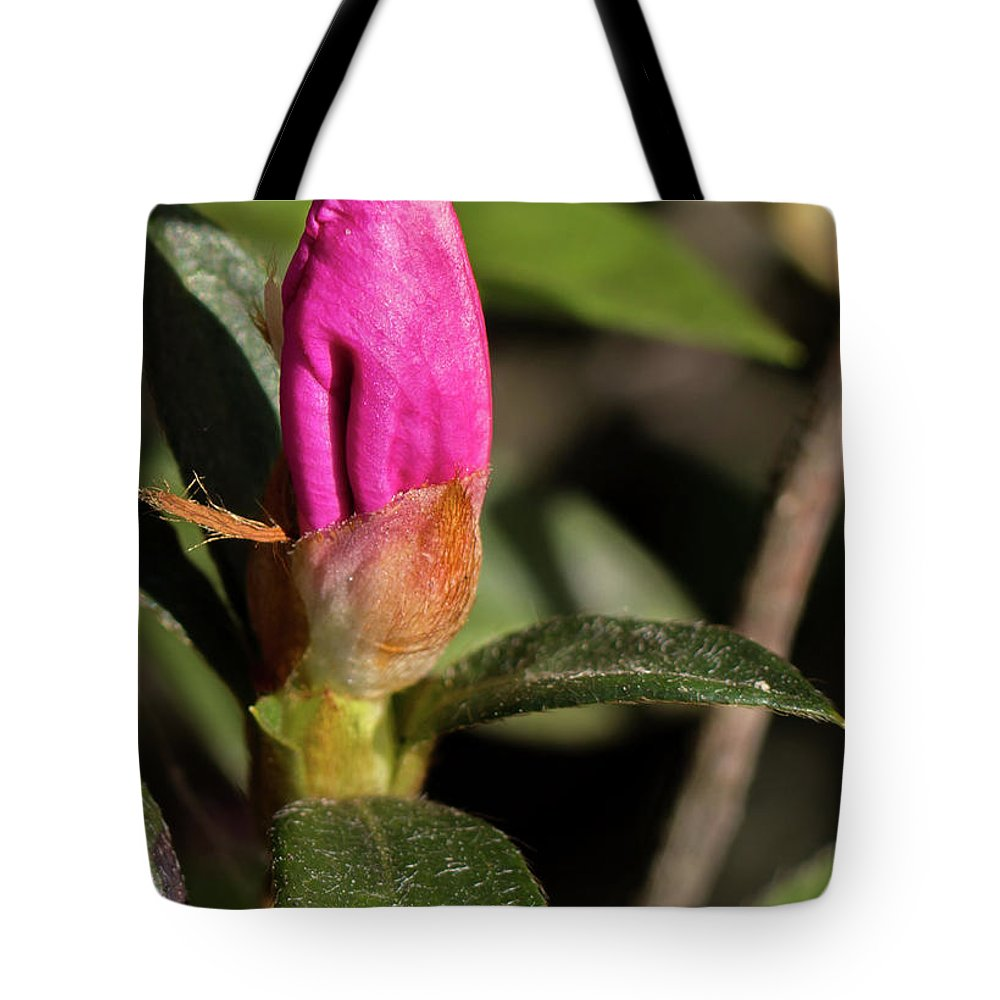 Lily Tote Bag featuring the photograph Lily Ready To Bloom by By Way of Karma
