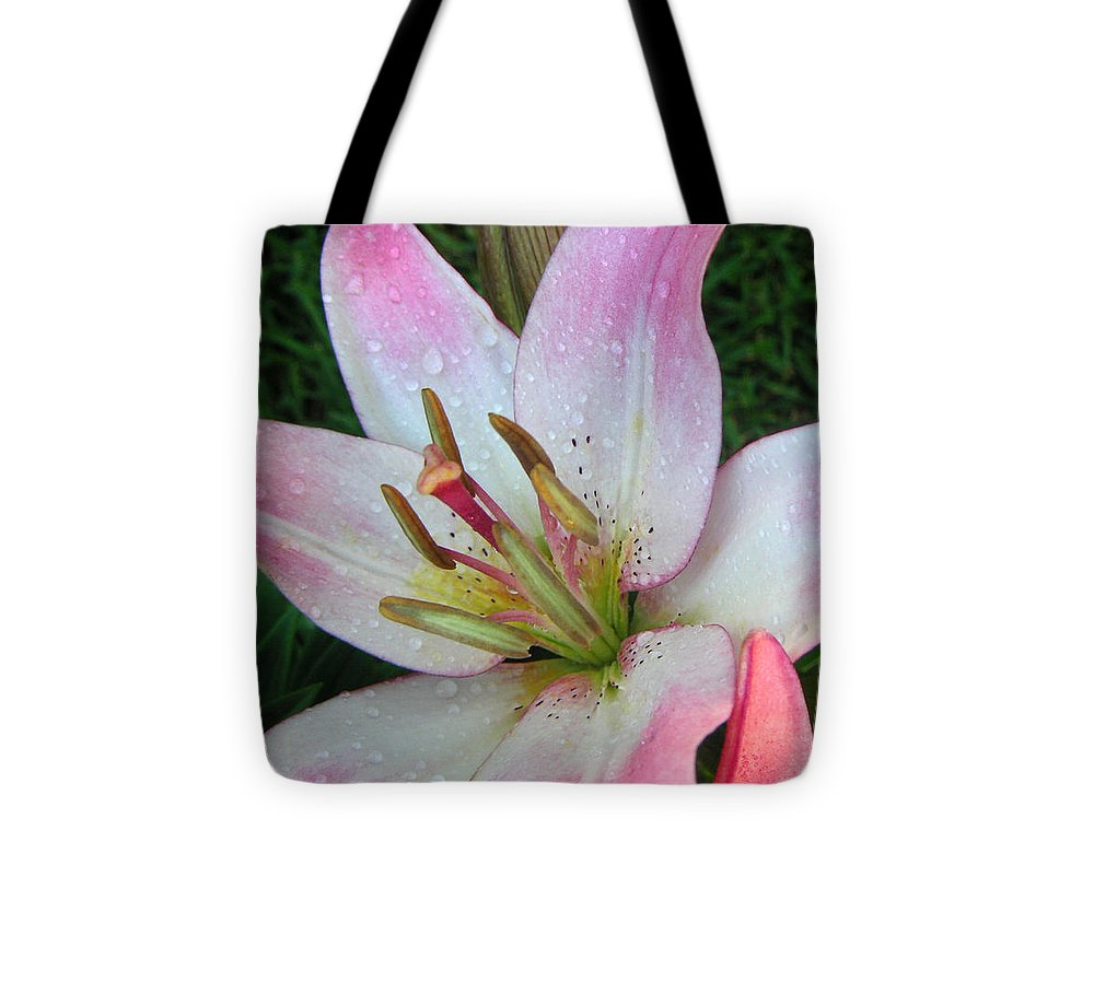 Nature Tote Bag featuring the photograph Lily Singled Out by Lucyna A M Green