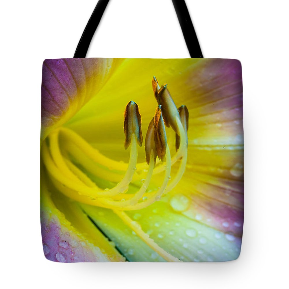 America Tote Bag featuring the photograph Lily Universe by Inge Johnsson