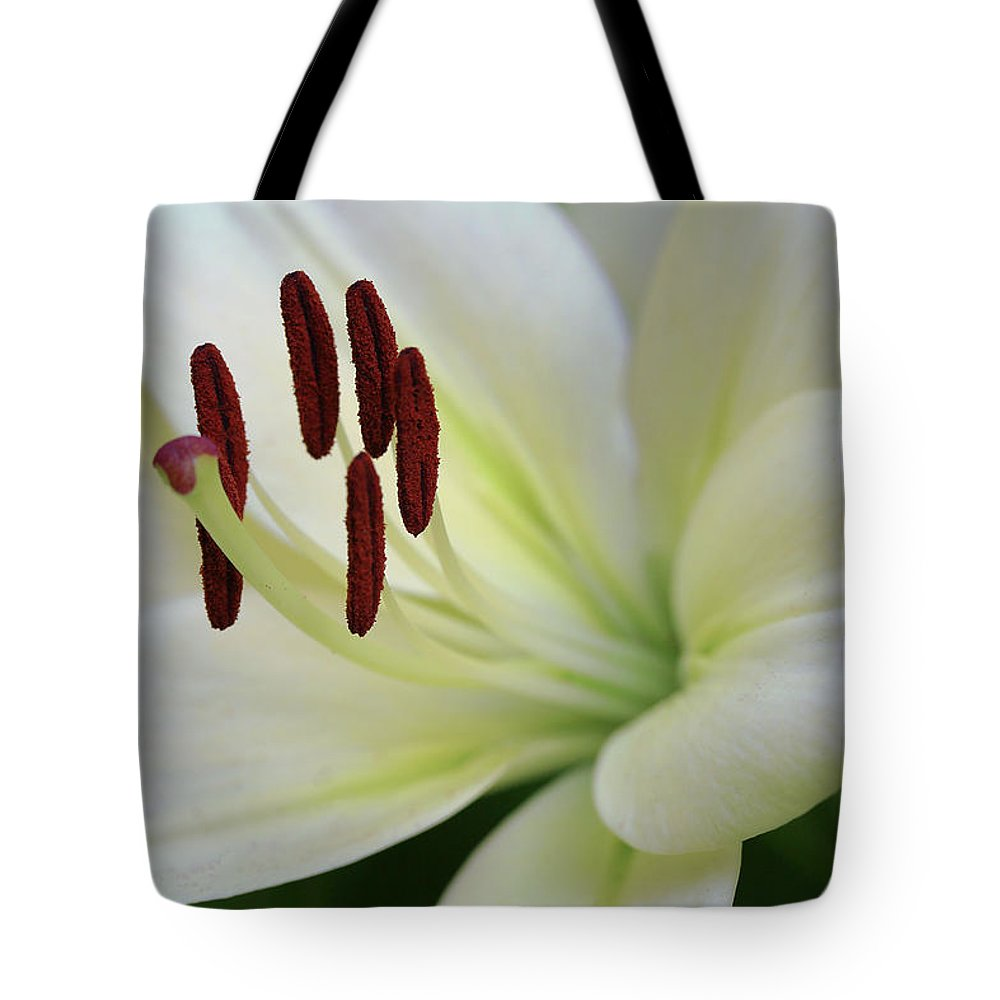 Nature Tote Bag featuring the photograph Lilywhite by Janice Bajek