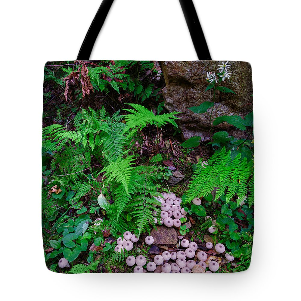 Shenandoah National Park Tote Bag featuring the photograph Limberlost by Rick Berk