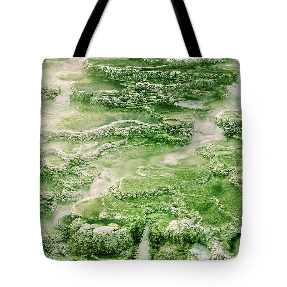 North America Tote Bag featuring the photograph Limestone Detail Minerva Springs Yellowstone National Park by Dave Welling
