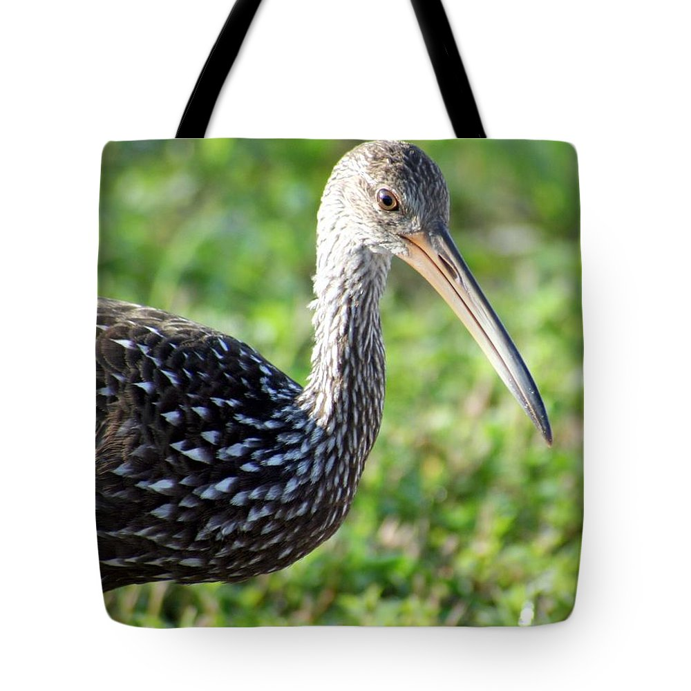 Bird Tote Bag featuring the photograph Limpkin Checking For Snails. by Dennis Rosa