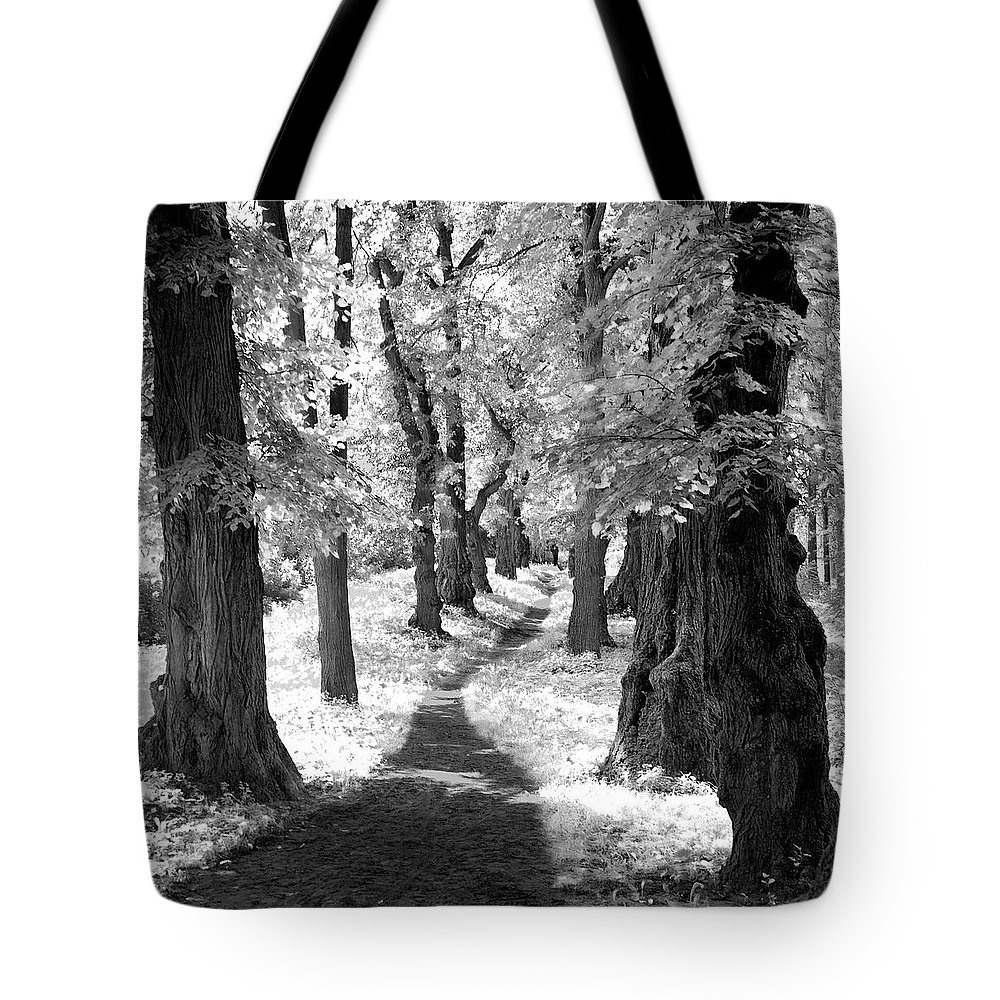 Travels Tote Bag featuring the photograph Linden Alley. Vinnytsya, 2010. by Mayk's PhotoArt