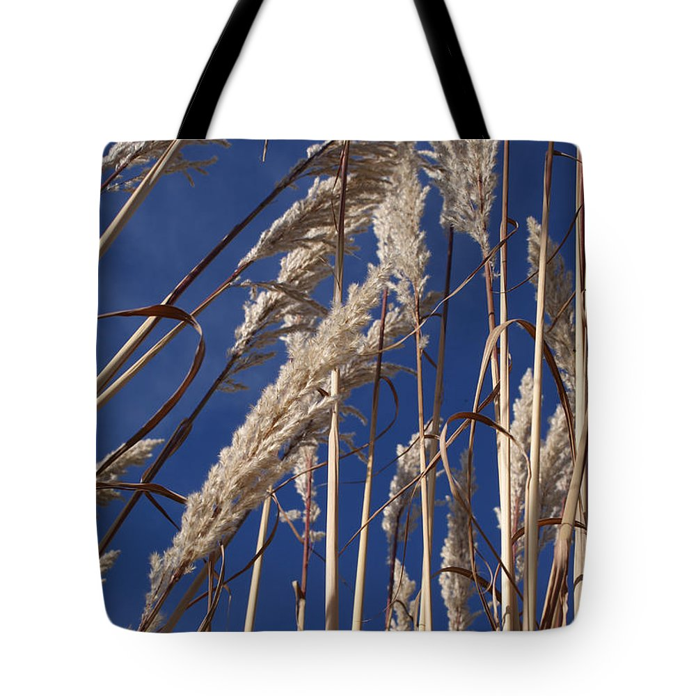 Photography Tote Bag featuring the photograph Line And Loop by Shelley Jones
