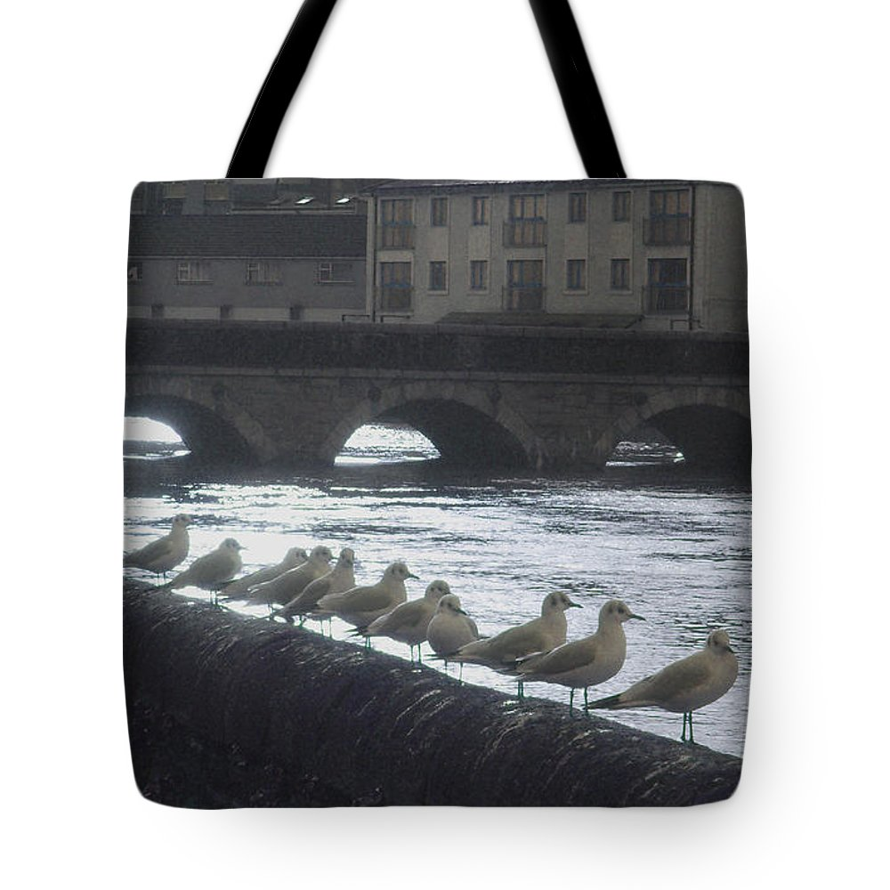 Birds Tote Bag featuring the photograph Line Of Birds by Tim Nyberg