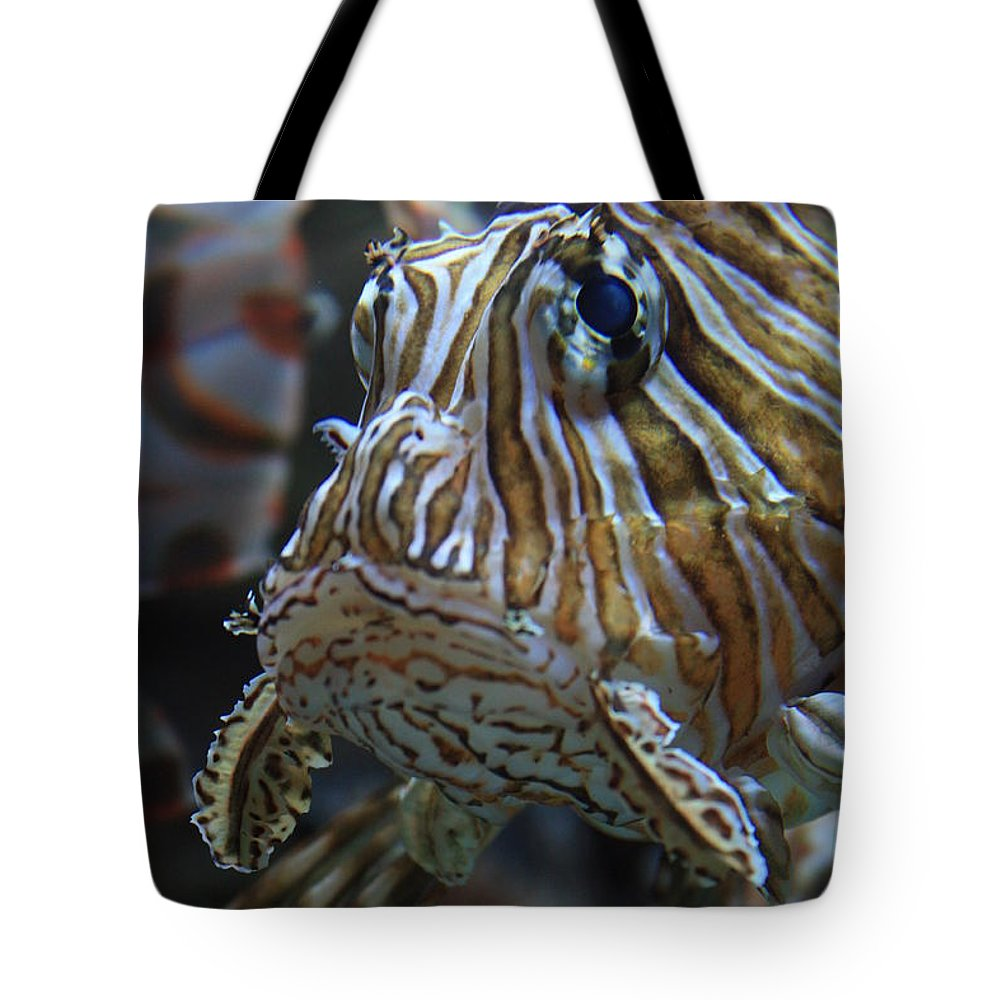Fish Tote Bag featuring the photograph Lion Fish Profile by Carol Groenen