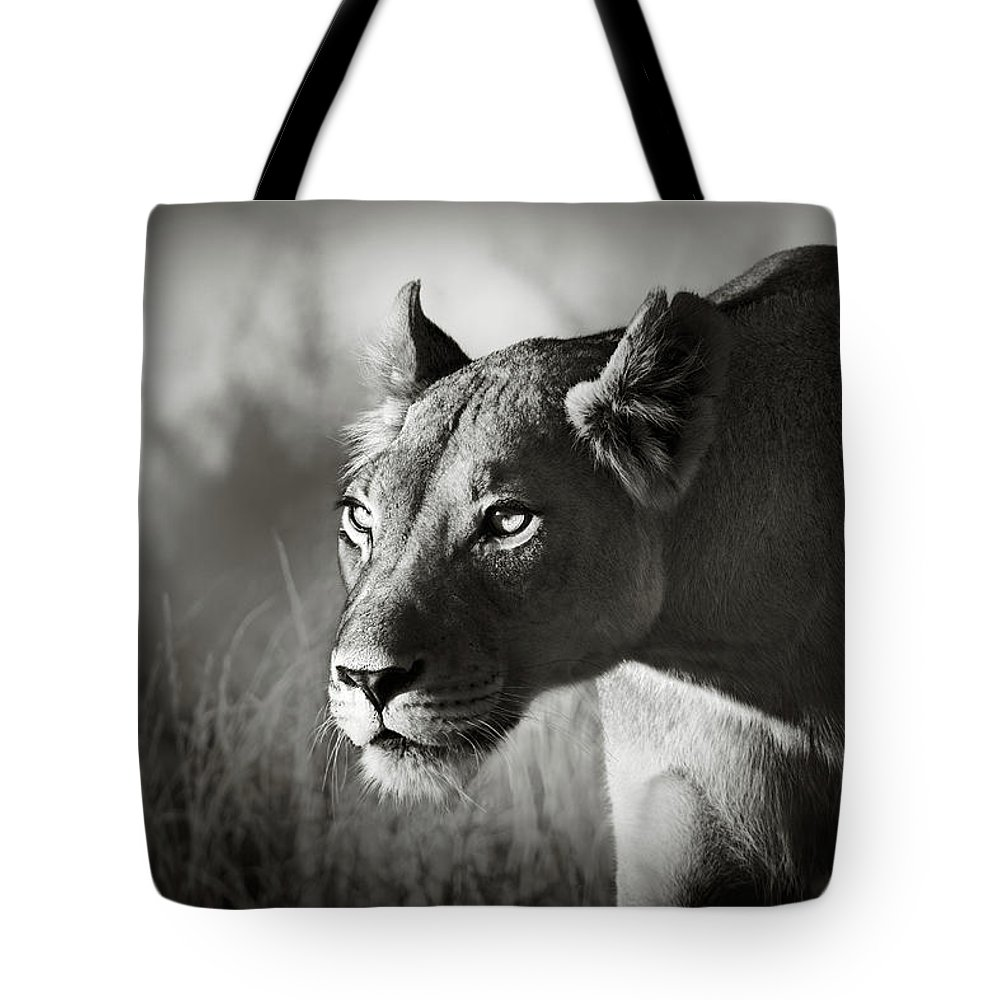 Lioness Tote Bag featuring the photograph Lioness Stalking by Johan Swanepoel