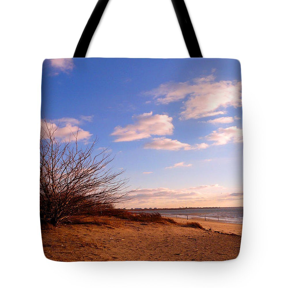 Landscape Tote Bag featuring the photograph Listen To The Quiet by Kendall Eutemey