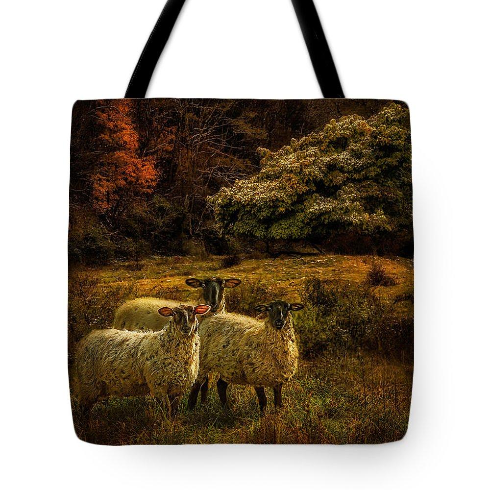 Linda King Tote Bags