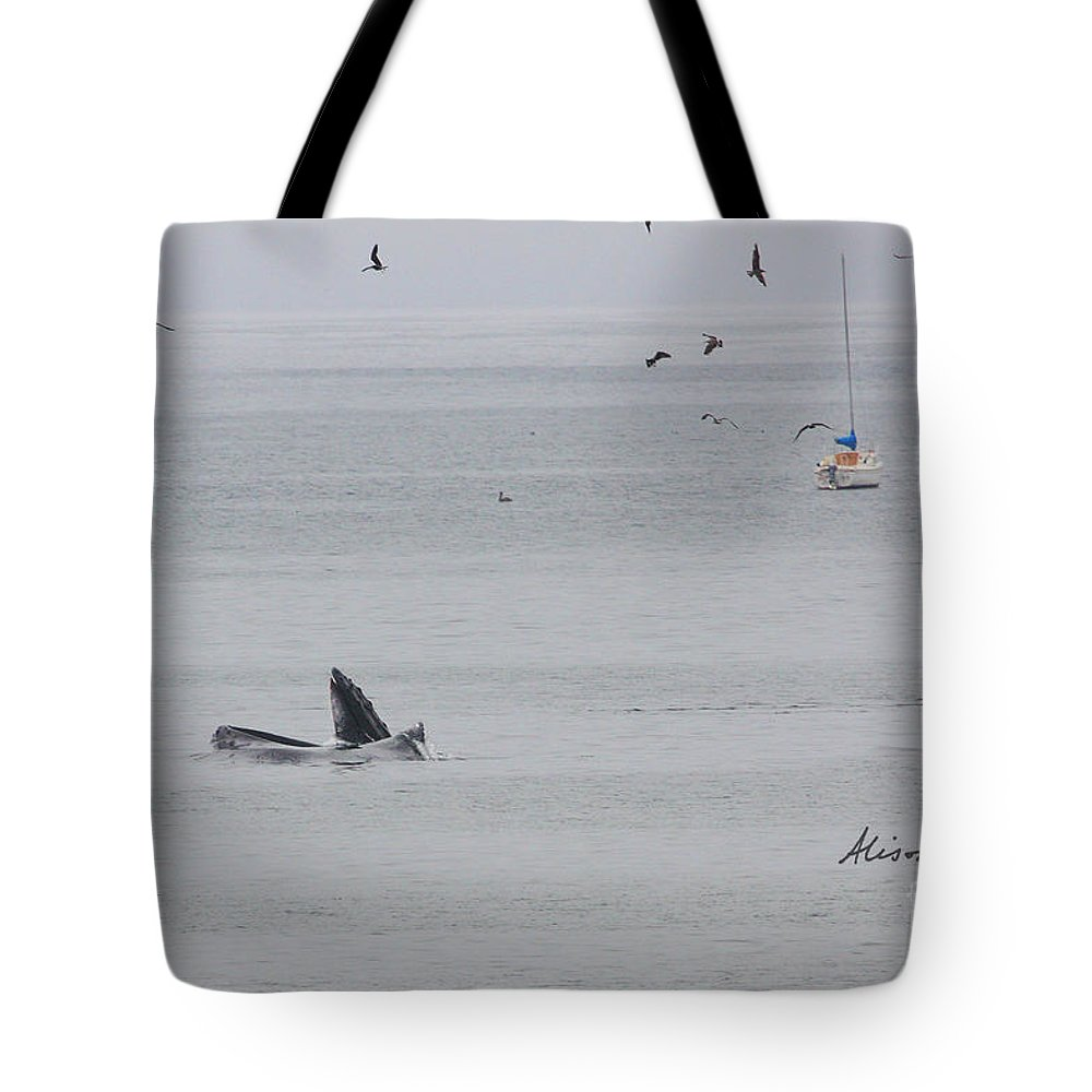 Whale Tote Bag featuring the photograph Little Amigo by Alison Salome