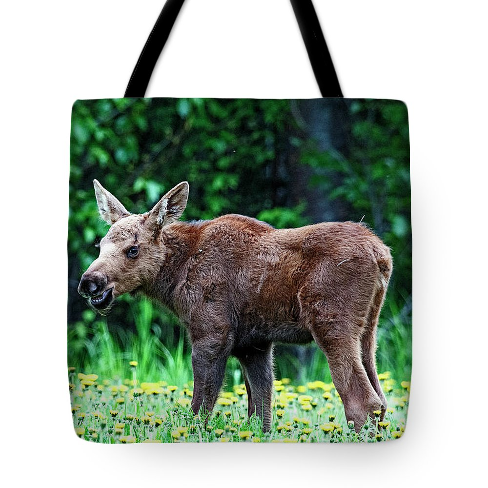 Moose Calf Tote Bag featuring the photograph Little Grinder by Eric Nelson