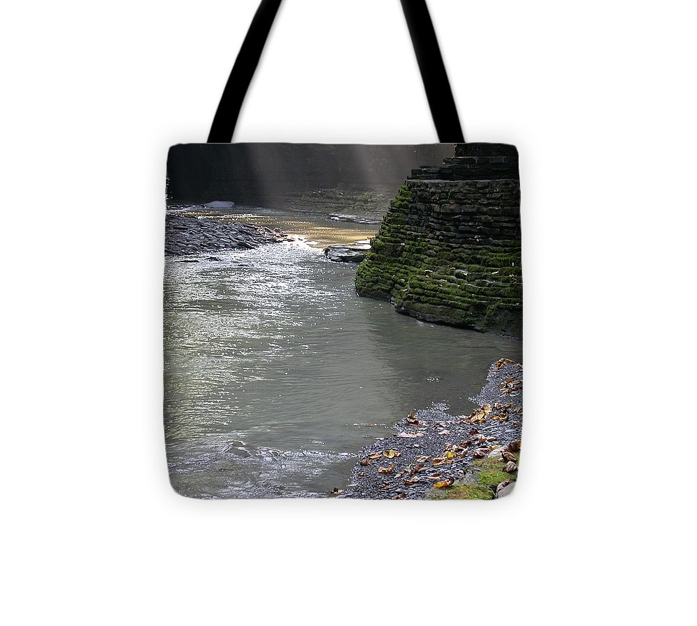 Watkins Glen Tote Bag featuring the photograph Little Ray of Sunshine by Linda Murphy