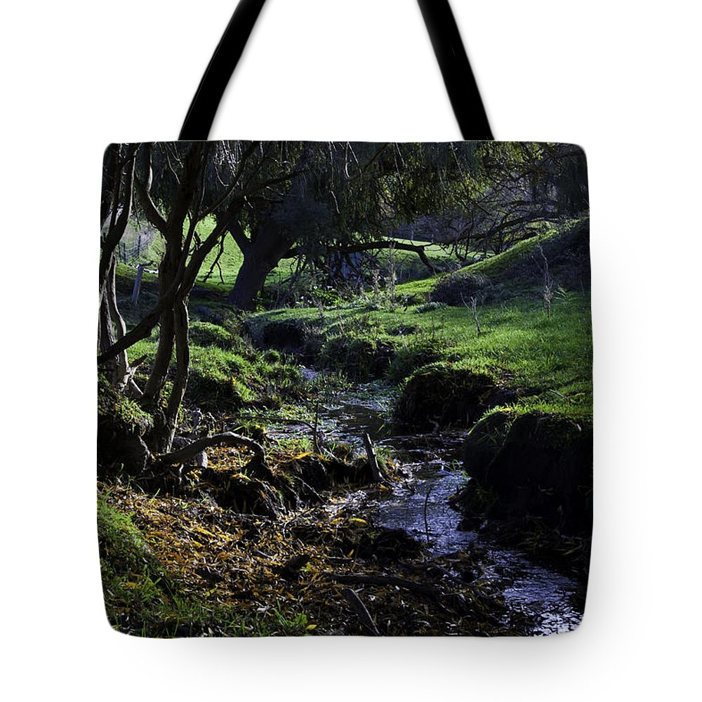 Stream Tote Bag featuring the photograph Little Stream by Kelly Jade King