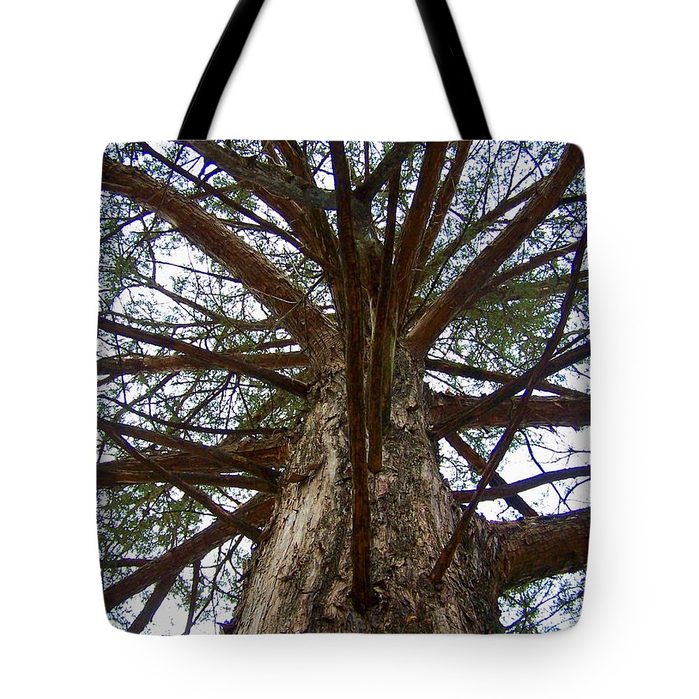 Life Tote Bag featuring the photograph Live Spokes by Nadine Rippelmeyer