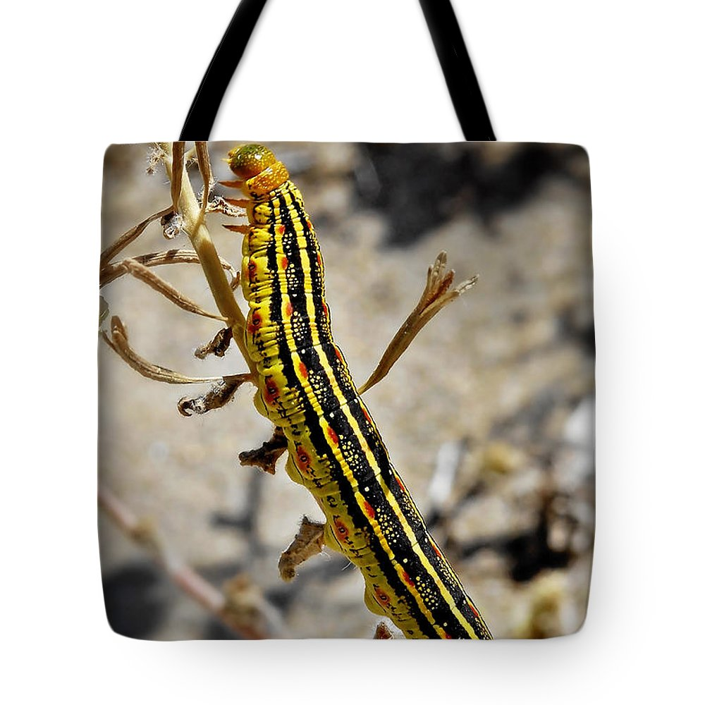 Caterpillar Tote Bag featuring the photograph Living Desert by Christine Till