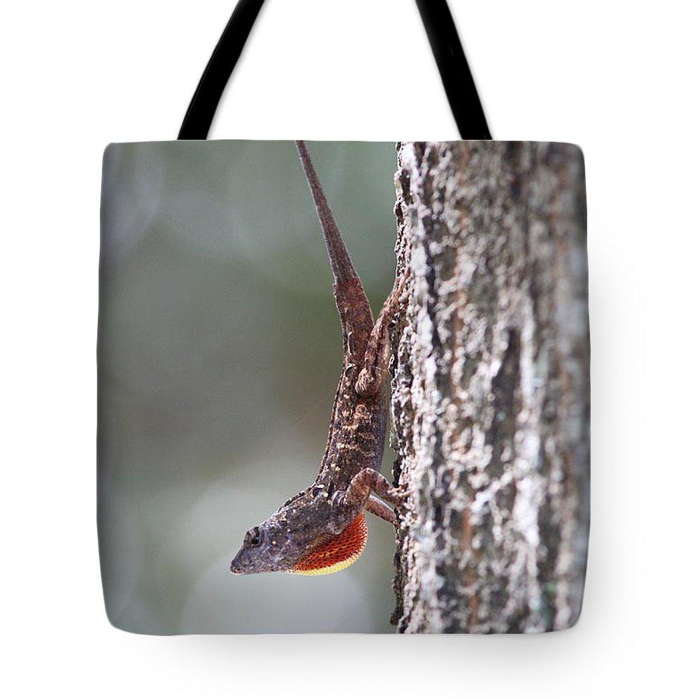 Lizard Tote Bag featuring the photograph Lizard 2 by Jim Clark