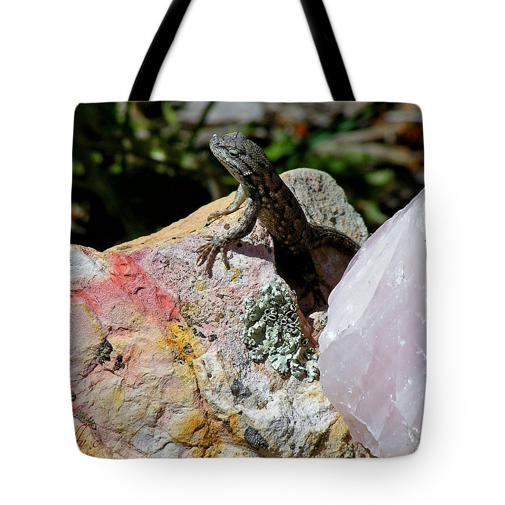 Lizard Animals Rocks Colorado Garden Minerals Quartz Simple Tote Bag featuring the photograph Lizard by George Tuffy
