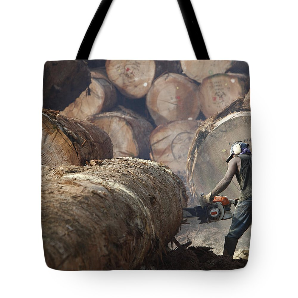Mp Tote Bag featuring the photograph Logger Cutting Tree Trunk, Cameroon by Cyril Ruoso